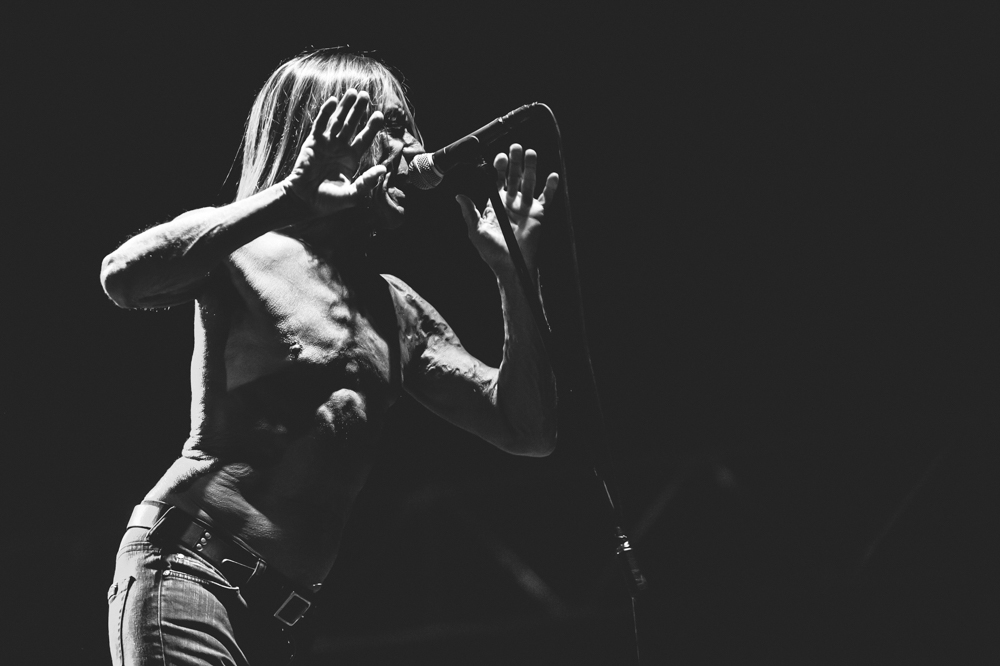 Iggy_Pop_and_The-Stooges_foto_concerto_Castello_Villafranca_Verona_27_07_2012_Iggy_Pop_and_The-Stooges_foto_concerto_Castello_Villafranca_Verona_27_07_2012__DSC3110