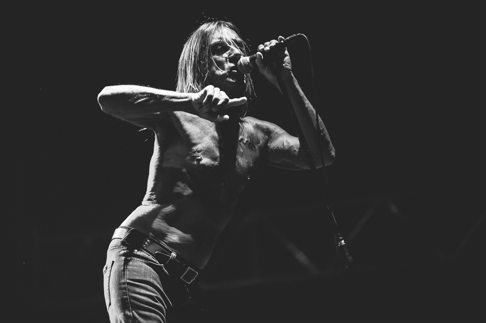 Iggy_Pop_and_The-Stooges_foto_concerto_Castello_Villafranca_Verona_27_07_2012_Iggy_Pop_and_The-Stooges_foto_concerto_Castello_Villafranca_Verona_27_07_2012__DSC3114