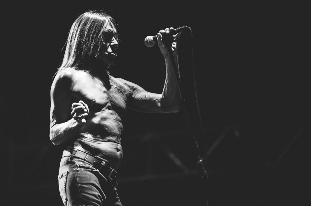 Iggy_Pop_and_The-Stooges_foto_concerto_Castello_Villafranca_Verona_27_07_2012_Iggy_Pop_and_The-Stooges_foto_concerto_Castello_Villafranca_Verona_27_07_2012__DSC3138