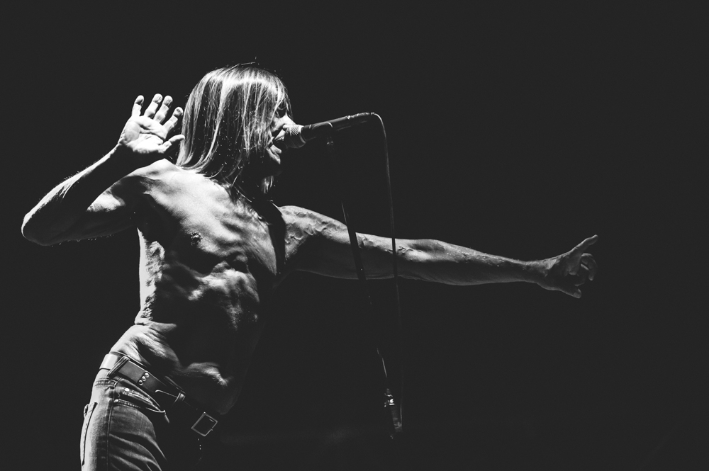 Iggy_Pop_and_The-Stooges_foto_concerto_Castello_Villafranca_Verona_27_07_2012_Iggy_Pop_and_The-Stooges_foto_concerto_Castello_Villafranca_Verona_27_07_2012__DSC3144