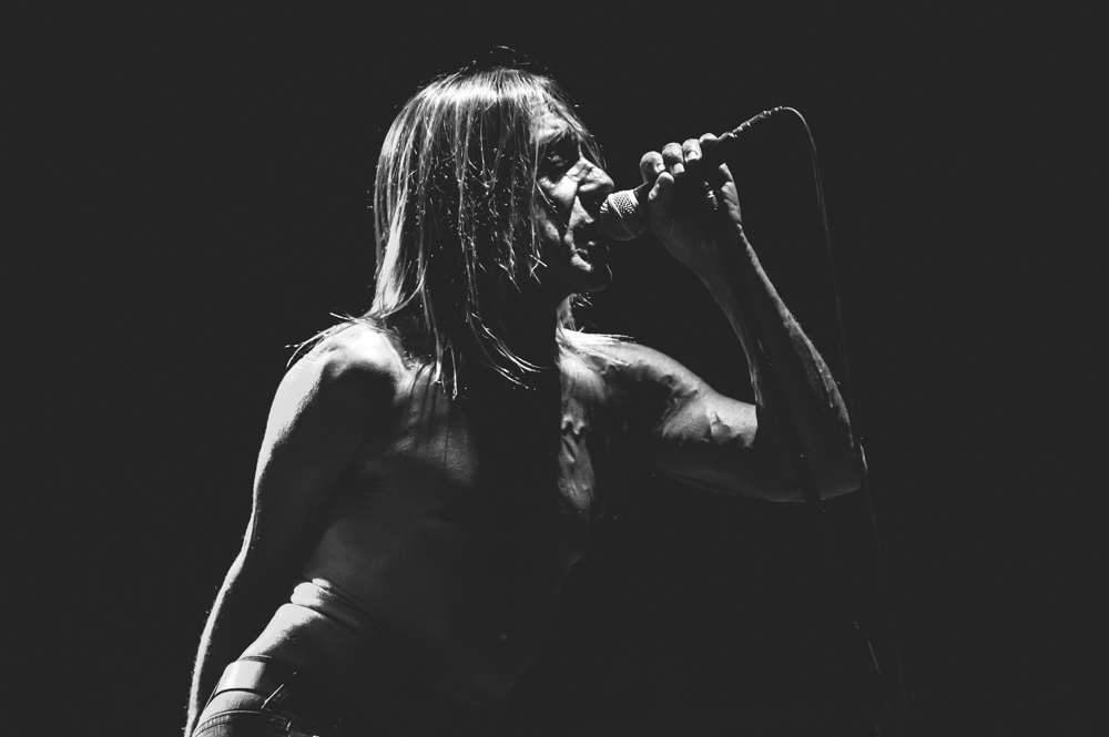 Iggy_Pop_and_The-Stooges_foto_concerto_Castello_Villafranca_Verona_27_07_2012_Iggy_Pop_and_The-Stooges_foto_concerto_Castello_Villafranca_Verona_27_07_2012__DSC3176