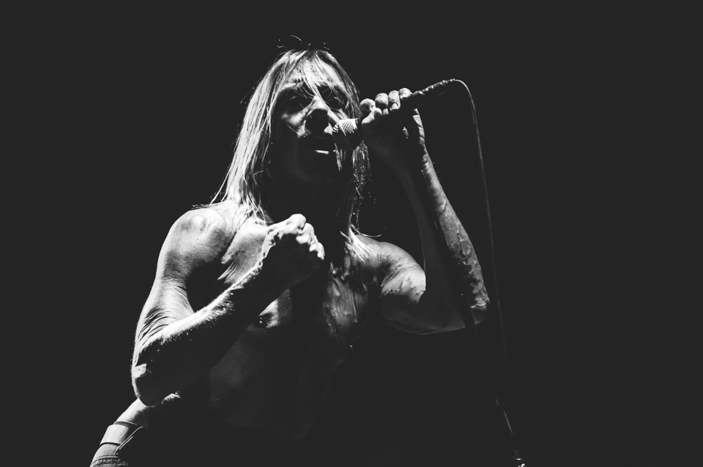 Iggy_Pop_and_The-Stooges_foto_concerto_Castello_Villafranca_Verona_27_07_2012_Iggy_Pop_and_The-Stooges_foto_concerto_Castello_Villafranca_Verona_27_07_2012__DSC3184