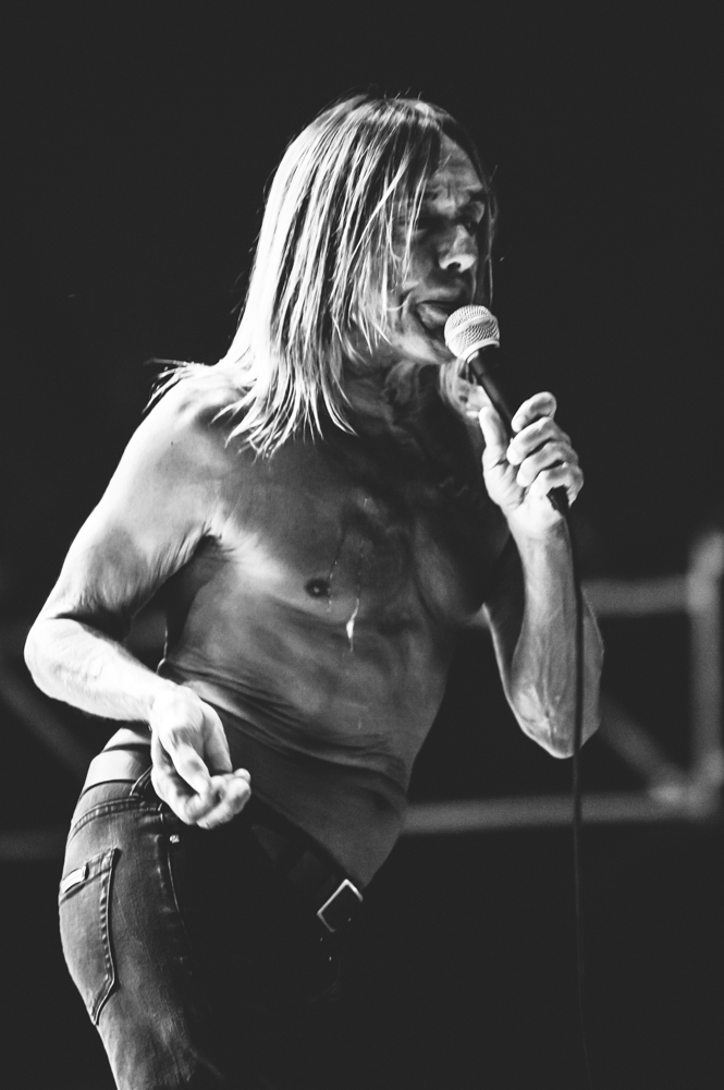 Iggy_Pop_and_The-Stooges_foto_concerto_Castello_Villafranca_Verona_27_07_2012_Iggy_Pop_and_The-Stooges_foto_concerto_Castello_Villafranca_Verona_27_07_2012__DSC3204