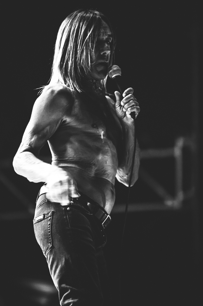 Iggy_Pop_and_The-Stooges_foto_concerto_Castello_Villafranca_Verona_27_07_2012_Iggy_Pop_and_The-Stooges_foto_concerto_Castello_Villafranca_Verona_27_07_2012__DSC3210