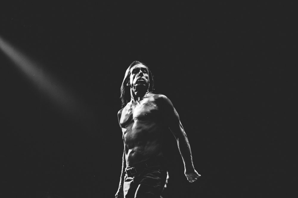 Iggy_Pop_and_The-Stooges_foto_concerto_Castello_Villafranca_Verona_27_07_2012_Iggy_Pop_and_The-Stooges_foto_concerto_Castello_Villafranca_Verona_27_07_2012__DSC3266