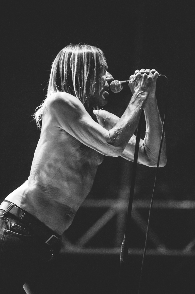 Iggy_Pop_and_The-Stooges_foto_concerto_Castello_Villafranca_Verona_27_07_2012_Iggy_Pop_and_The-Stooges_foto_concerto_Castello_Villafranca_Verona_27_07_2012__DSC3328