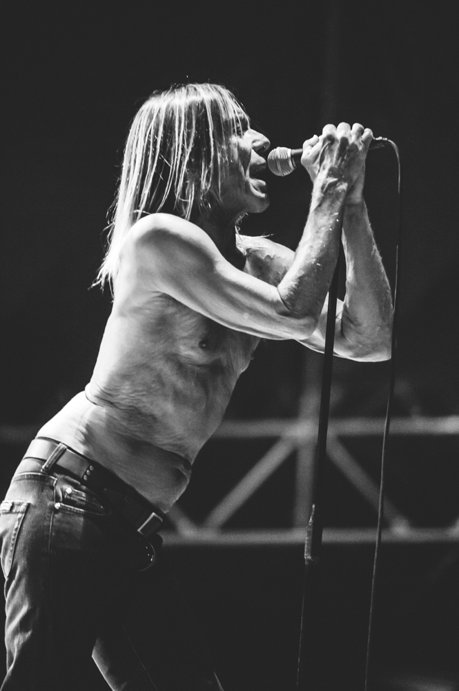 Iggy_Pop_and_The-Stooges_foto_concerto_Castello_Villafranca_Verona_27_07_2012_Iggy_Pop_and_The-Stooges_foto_concerto_Castello_Villafranca_Verona_27_07_2012__DSC3346