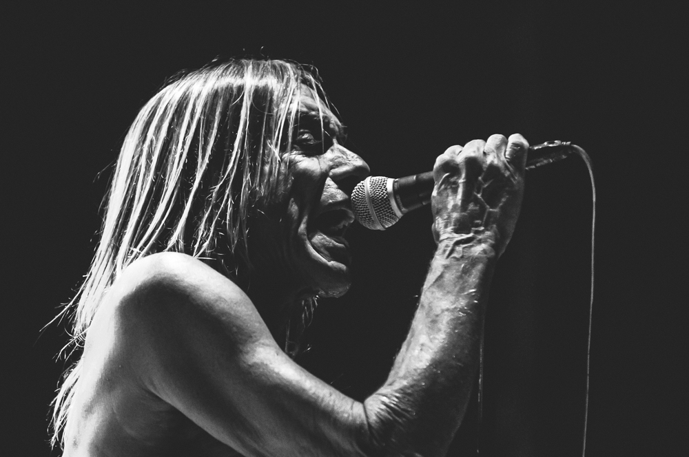 Iggy_Pop_and_The-Stooges_foto_concerto_Castello_Villafranca_Verona_27_07_2012_Iggy_Pop_and_The-Stooges_foto_concerto_Castello_Villafranca_Verona_27_07_2012__DSC3354