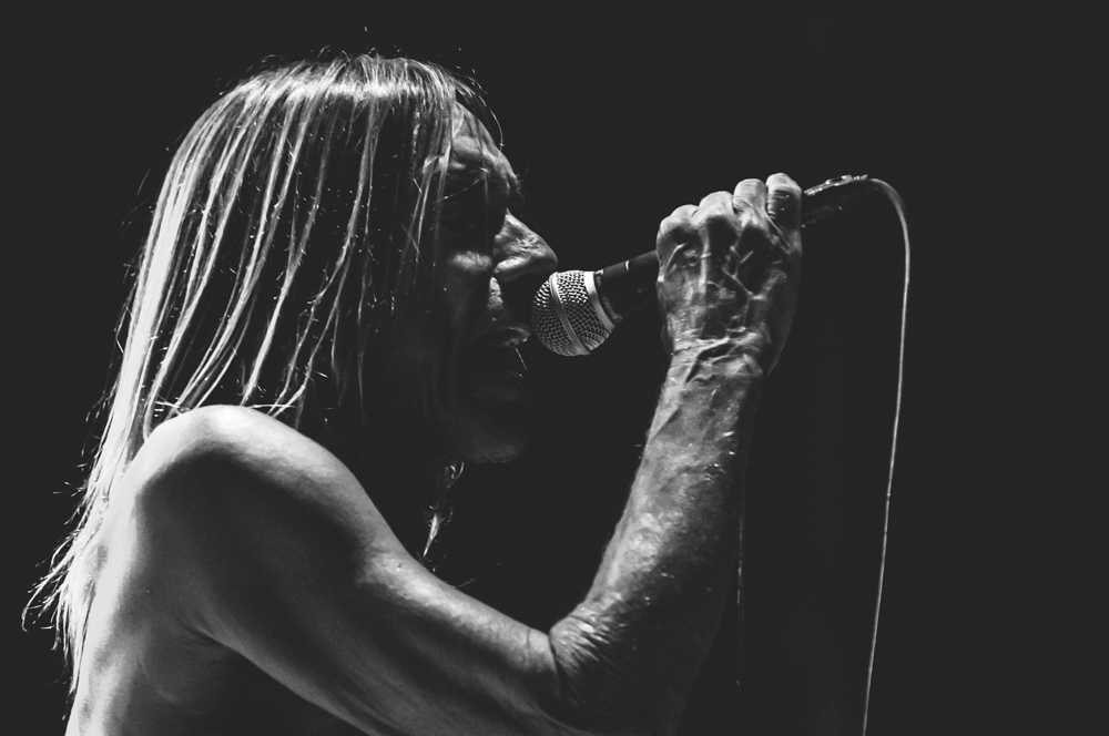 Iggy_Pop_and_The-Stooges_foto_concerto_Castello_Villafranca_Verona_27_07_2012_Iggy_Pop_and_The-Stooges_foto_concerto_Castello_Villafranca_Verona_27_07_2012__DSC3357