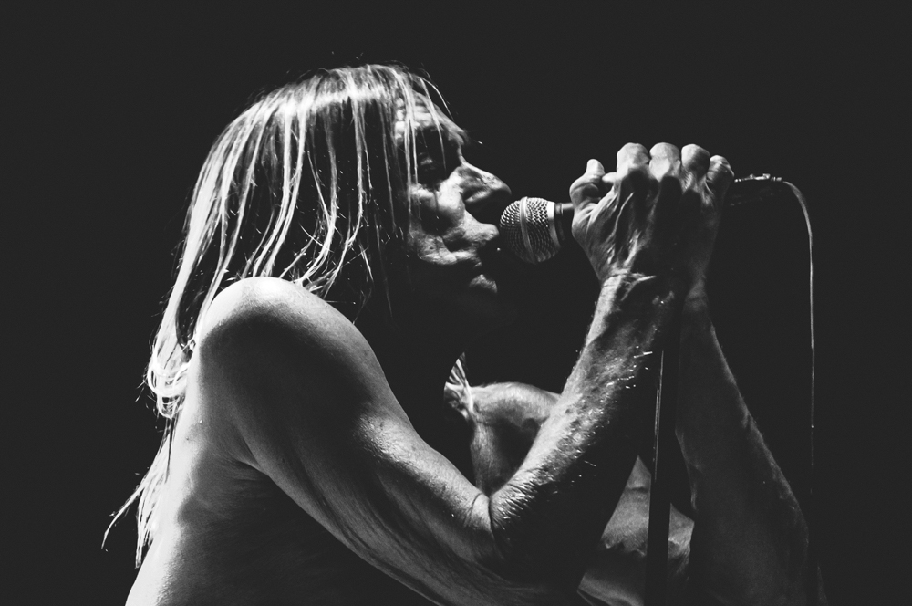 Iggy_Pop_and_The-Stooges_foto_concerto_Castello_Villafranca_Verona_27_07_2012_Iggy_Pop_and_The-Stooges_foto_concerto_Castello_Villafranca_Verona_27_07_2012__DSC3372